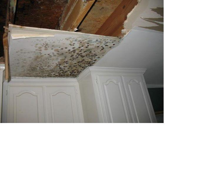 Mold on Ceiling Before