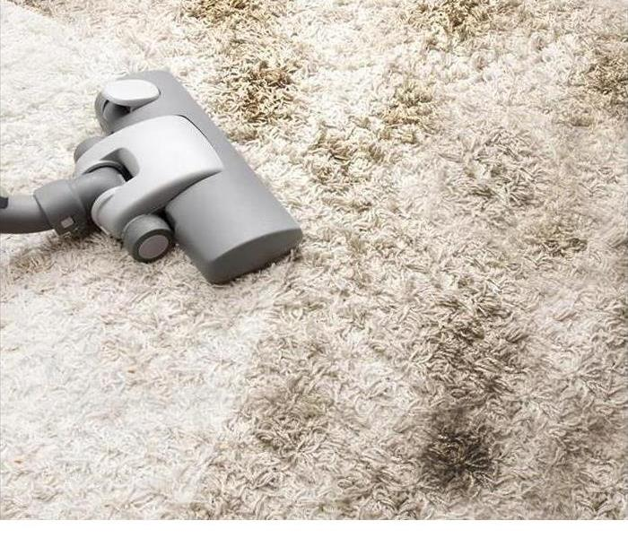 Cleaning 411 on Carpet Cleaning