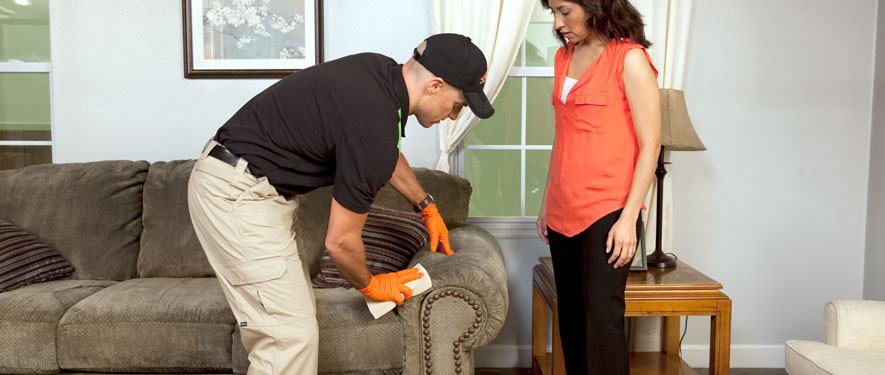 Lexington, SC carpet upholstery cleaning