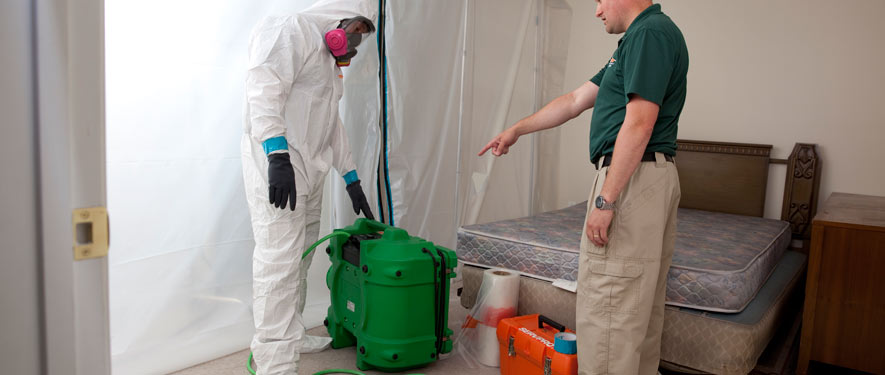 Lexington, SC mold removal process